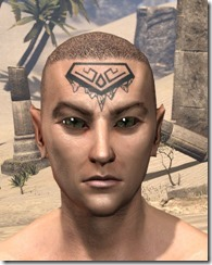 Alftand Glacial Face Tattoos Male Front