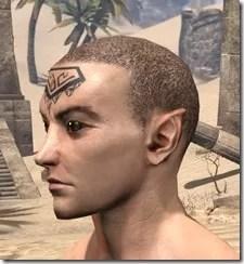 Alftand Glacial Face Tattoos Male Side