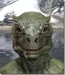 Bronze Color Eyeshadow Argonian Male Front
