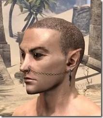 ~Chained Wrath Piercings Male Side