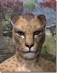 Feather Brows of Mystery Khajiit Female Front