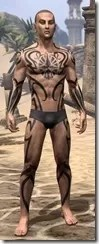 Meridian Radiance Body Tattoos Male Front