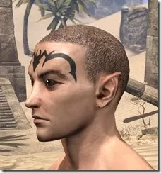 Meridian Radiance Face Tattoos Male Side
