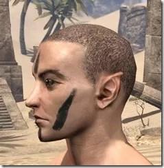 Meridian War Burst Face Markings Male Side