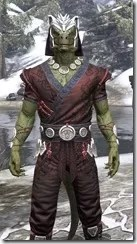 Jode & Jone Light - Argonian Male Shirt Close Front