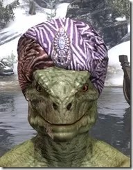 Madgod's Turban - Argonian Male Front