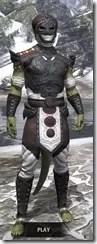 Pellitine Light - Argonian Male Shirt Front