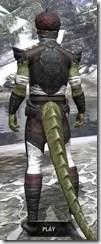 Pellitine Light - Argonian Male Shirt Rear