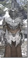 Meridian Homespun - Argonian Male Robe Close Front