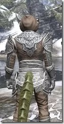 Meridian Homespun - Argonian Male Shirt Close Rear