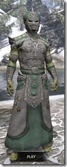 Pellitine Homespun - Argonian Male Robe Front