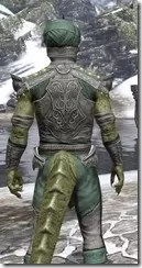 Pellitine Homespun - Argonian Male Shirt Close Rear