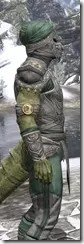 Pellitine Homespun - Argonian Male Shirt Close Side