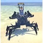 Ebony Dwarven Spider
