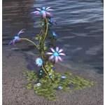 Flower Cluster, Wyrdbloom