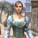 Bleakrock Housecarl Dress