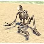 Skeletal Remains, Slumped Over
