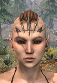 Blood Scion Razorguard - Female Front