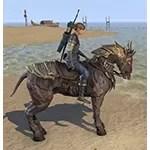 Cursebound Horse