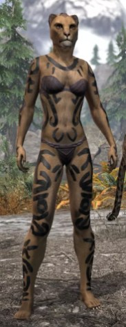 Forsaken Sacrifice Body Markings - Khajiit Female Front