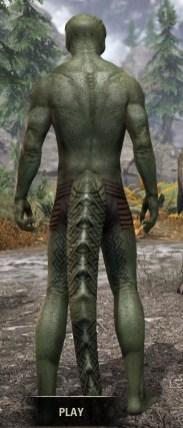 Karthwatch Guardian Body Tattoo - Argonian Male Rear