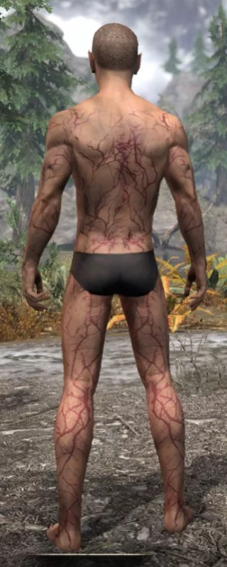 Thrall's Arterial Map Body Marks - Male Rear