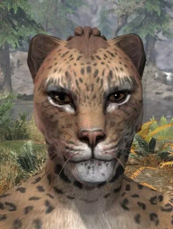 Thrall's Arterial Map Face Marks - Khajiit Female Front