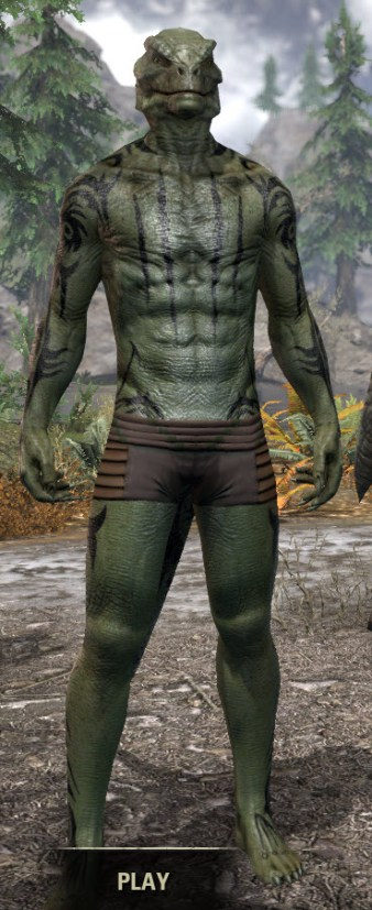 Umbral Snarl Body Markings - Argonian Male Front