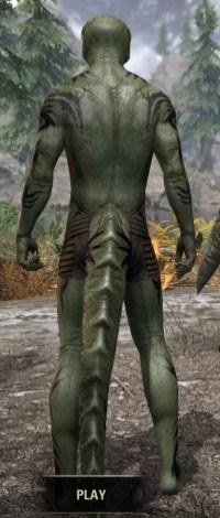 Umbral Snarl Body Markings - Argonian Male Rear