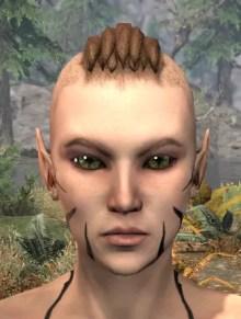 Umbral Snarl Face Markings - Female Front