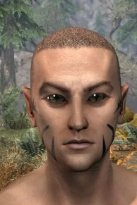Umbral Snarl Face Markings - Male Front
