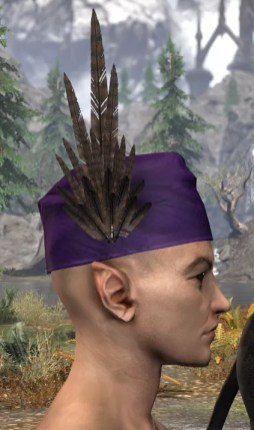 Wayrest Canto Chapeau - Male Right