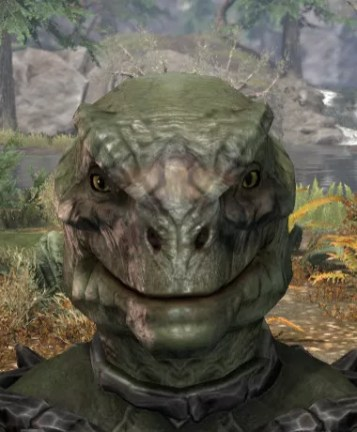 Maddening Mishap Face Markings - Argonian Male Front