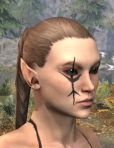 Morthal Champion Face Markings - Female Side