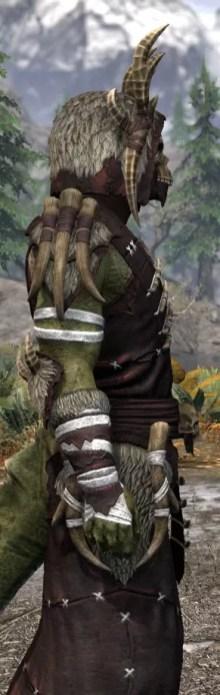Ancestral Reach Light - Argonian Male Robe Close Side