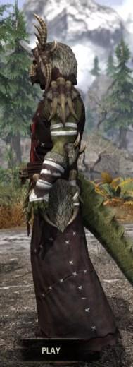Ancestral Reach Light - Argonian Male Robe Side