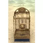Dwarven Cage, Polished Specimen