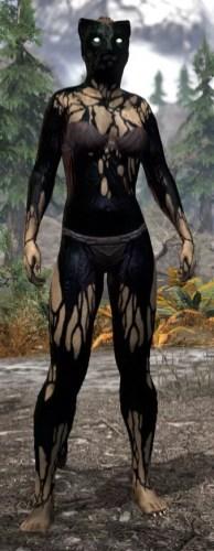 Void Pathosis - Khajiit Female Front