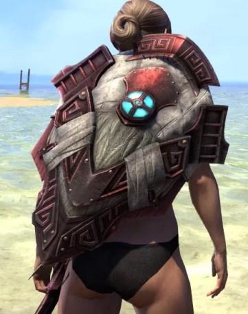 Wayward Guardian Shield 1