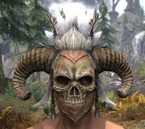 Witchwise Headdress - Male Front