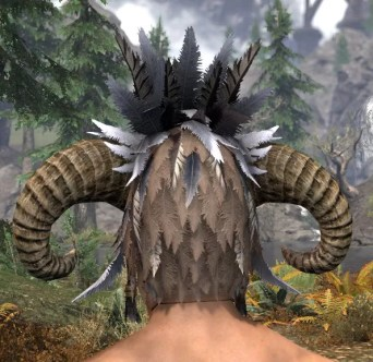 Witchwise Headdress - Male Rear