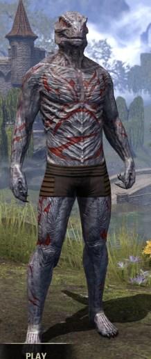 Dagon's Viscerent - Argonian Male Front