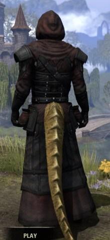 True-Sworn Light - Argonian Male Robe Rear