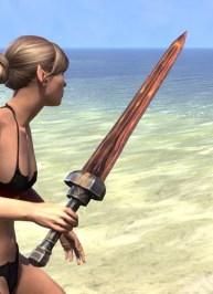 True-Sworn Sword 2