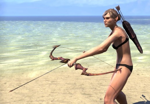 Waking Flame Bow 2