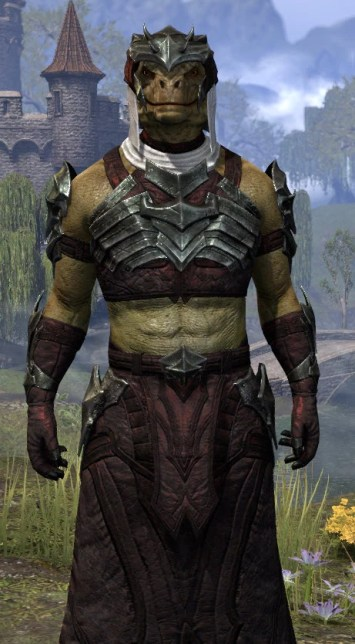 Waking Flame Light - Argonian Male Robe Close Front