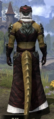Waking Flame Light - Argonian Male Robe Rear
