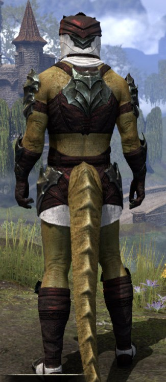 Waking Flame Light - Argonian Male Shirt Rear