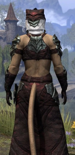 Waking Flame Light - Khajiit Female Robe Close Rear
