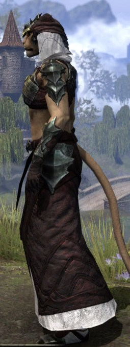 Waking Flame Light - Khajiit Female Robe Side